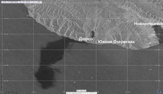 Радиолокационное изображение получено 8 августа 2021 в 18:20 часов местного времени с помощью спутника Sentinel-1