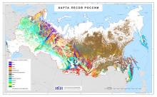 Регулярно обновляемые по данным ДЗЗ карты лесов России несут информацию о пространственном распределении лесов по основным преобладающим древесным породам