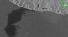 Радиолокационное изображение (Sentinel-1) 8 августа 2021 г.